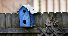 Blue Birdhouse On Rustic Fence