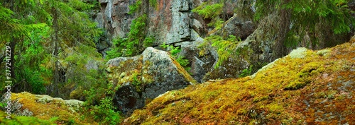 Granite rocks and canyons in Finland, texture close-up Canvas Print