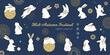 Happy rabbit set. Mid-autumn festival elements. Flat bunny collection