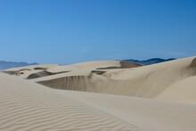 Sand Dunes - San Luis Obispo