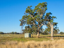 A Traditional Windmill Pump And Water Tank - Mansfield, Victoria, Australia