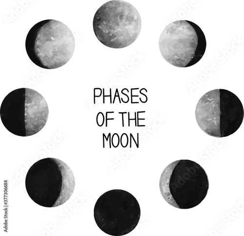 Phases of the Moon Vector Wallpaper Mural