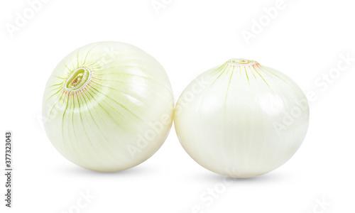 Obraz na płótnie onions on white background