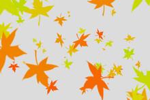 Autumn Leaves On Gray Backgrou...
