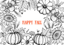 Autumn Design Template. Sketch Design. Harvest Festival. Hand Drawn Frame With Fall Leaves, Pumpkin And Sunflower. Vector Illustration. Autumn Bouquets.