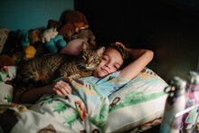 Brown Tabby Cat Snuggles Up Ag...