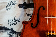 Violin Maker Luthier Changing Bridge Of A Handmade Baroque Violin