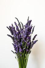 Lavender Bouquet Still Life Ag...