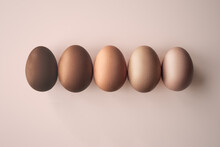 Row Of Eggs In Sunlight