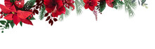 Emerald Christmas Greenery, Red Poinsettia, Amaryllis, Spruce, Fir Vector Design Banner