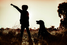 Silhouette Of Boy And Dog