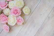 Pink And White Rose Buds On A ...