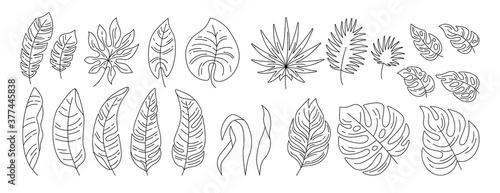 Exotic leaves black linear cartoon set Wallpaper Mural