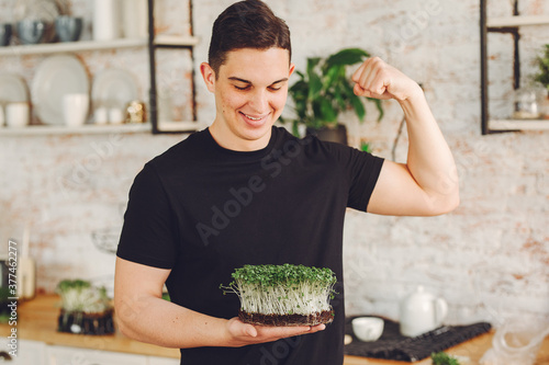 Fototapeta Microgreen corundum coriander sprouts in male hands. Raw sprouts, microgreens, healthy eating concept. obraz
