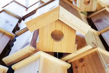 Wooden Bird Feeders. Wildlife Care In An Urban Setting