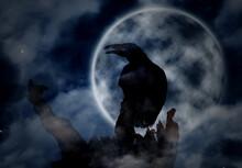 Creepy Black Crow Croaking On ...