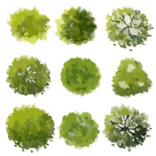 Set Of Green Trees Top View For Landscape Plan And Architecture Drawing,element For Garden And Environment