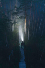 Person With Headlamp Looking In Forest On Boardwalk With Fog