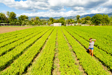 Giovane Donna Di Campagna Fa Giardinaggio In Mezzo Ad Un Campo Ed è Stanca Con Una Camicia A Quadri