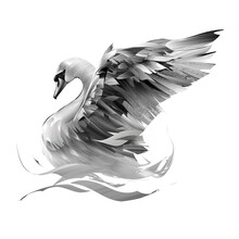 Painted Swan On A White Backgr...
