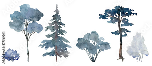 Canvas Print Snowy trees and shrubs, winter scene elements, bluish winter forest