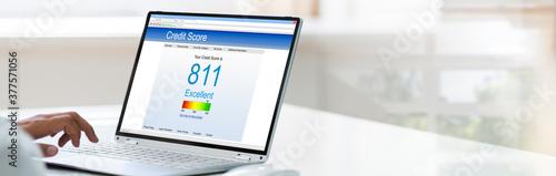 Cuadros en Lienzo Checking Credit Score. Excellent History