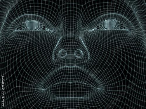 Fototapeta 3D Head Mesh obraz