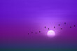 canvas print picture - beautiful purple violet sunset and silhouette of birds fly passing sun and blur sky