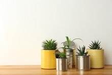 Beautiful Houseplants In Tin C...