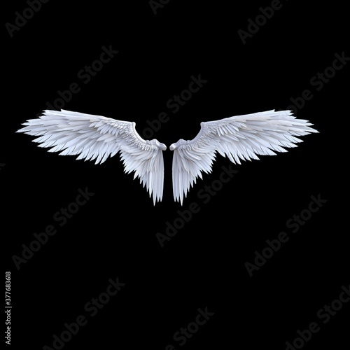 white wings isolated on black Canvas
