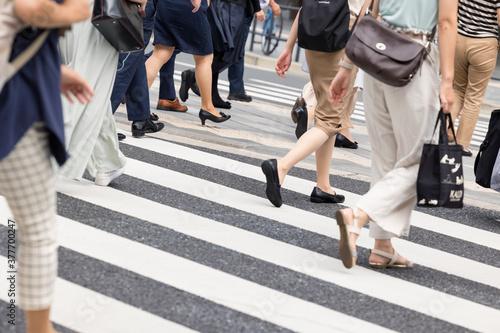 Fotografie, Obraz 横断歩道を渡る女性たちの足元
