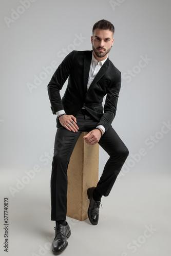 Obraz sexy businessman is posing against gray background - fototapety do salonu