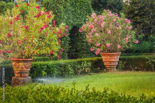 Valokuva A garden in Tuscany, Italy