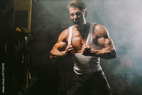 Powerful sexy muscular body model tearing shirt Wallpaper Mural