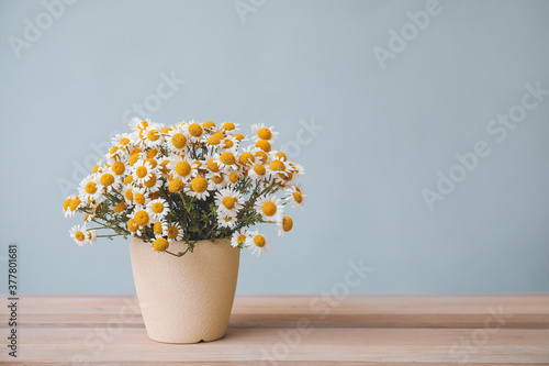 Fotografija Bouquet of fresh chamomile flowers in vase on table against grey background