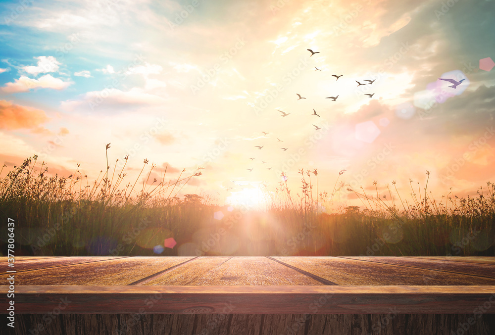 Fototapeta World environment day concept: Wooden floor and birds flying on beautiful meadow with sky autumn sunrise background
