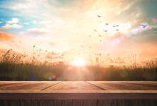 World Environment Day Concept: Wooden Floor And Birds Flying On Beautiful Meadow With Sky Autumn Sunrise Background