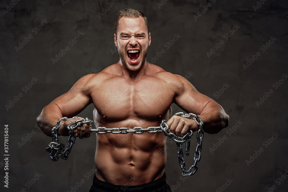 Fototapeta Confident bodybuilder with musculate body and with chains posing and cry in grung background.