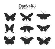 Butterflies Silhouettes On Whi...