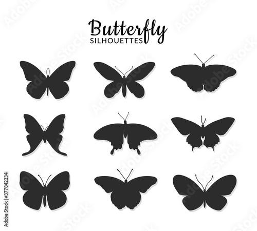 Fotografia Butterflies silhouettes on white background