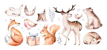 Watercolor Winter Forest Animals Deer With Fawn, Owl Rabbits, Bear Birds On White Background. Wild Forest Fox And Squirrel Animals Set. Hand Painted Winter Christmas Card