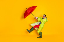 Full Size Photo Of Excited Crazy Girl Hold Catch Air Fly Wind Blow Parasol Wear Blue Dotted Blouse Gum Shoes Isolated Over Bright Shine Color Background