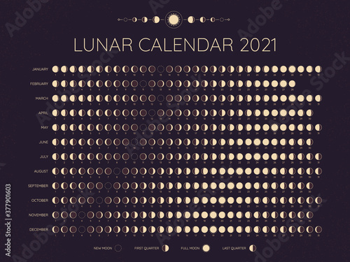 Obraz Moon calendar 2021. Lunar phases cycles dates, full. New and every phase in between, moon schedule monthly calendar year vector illustration. Lunar calendar at year, template monthly schedule - fototapety do salonu