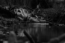 Black And White Waterfall Refl...