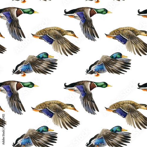 Photo watercolor Seamless pattern with flying duck