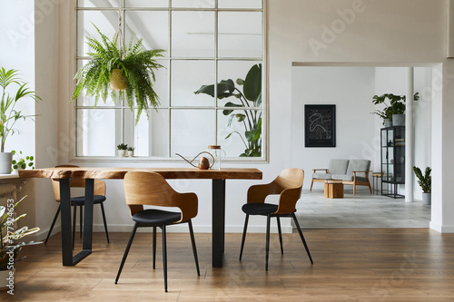 Stylish and botany interior of dining room with design craft wooden table, chairs, a lof of plants, window, poster map and elegant accessories in modern home decor Fototapeta