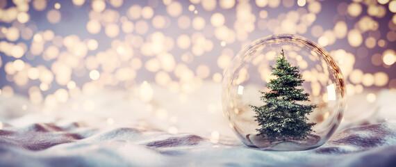Christmas tree in glass ball on snow. Glitter lights