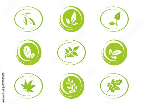 leaves, plant, icons , nature, Eco friendly business logo Fototapet