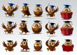 set of owls for school and diploma