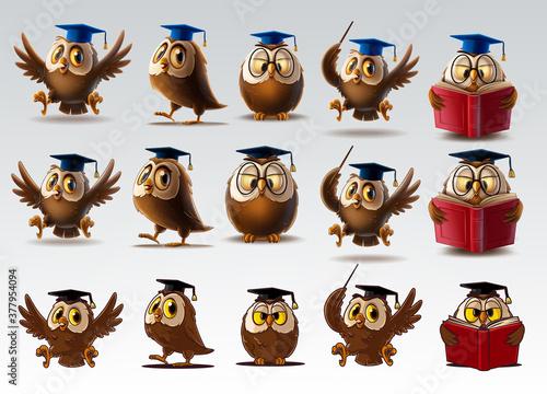 Fototapeta set of owls for school and diploma obraz
